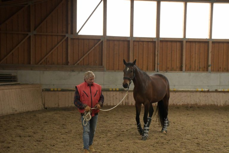 Horsemanship NPT-Ranch