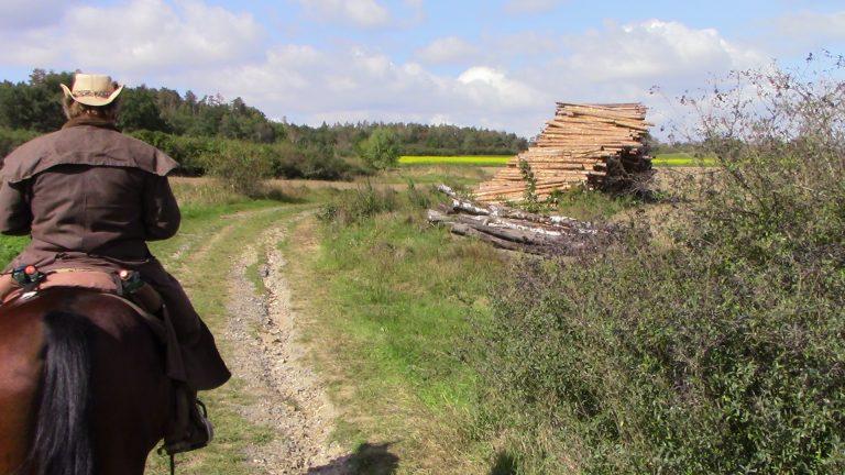 Wanderreiten NPT-Ranch